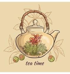 Flowering tea in teapot vector