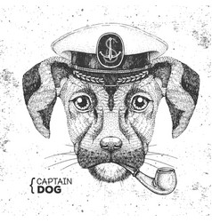 Hipster animal dog captains cap and smoking pipe vector