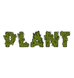 Lettering design weed inscription plant vector