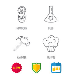 Newborn muffin and lab bulb icons vector