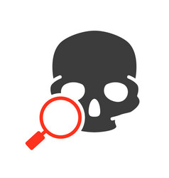 Skull with magnifying glass colored icon cranium vector
