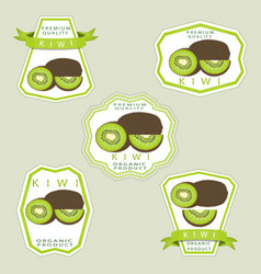 the theme kiwi vector image