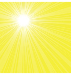bright sun rays vector image vector image