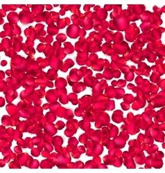 Background of beautiful red rose petals EPS 10 vector image