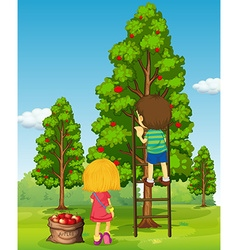Boy and girl picking apples from the tree vector