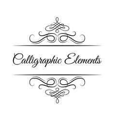 Calligraphic design elements decorative swirl vector