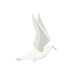 Cartoon white flying dove bird sideways vector