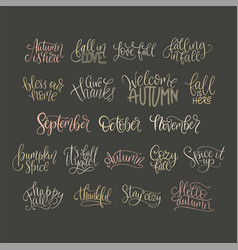 Cozy fall lettering set vector