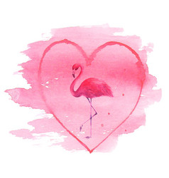 Flamingo in pink heart isolated on white vector