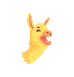 Funny laughing llama character cute alpaca animal vector