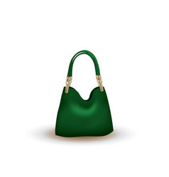 green bag on white background vector image