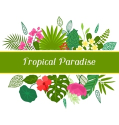 Tropical paradise card with stylized leaves and vector image