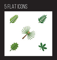 flat icon nature set of alder rosemary acacia vector image