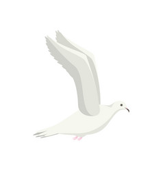 cartoon white flying dove bird sideways vector image