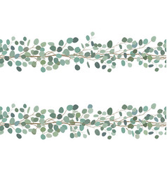 elegant seamless borders of eucalyptus branches vector image