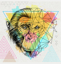 Hipster animal realistic and polygonal monkey vector