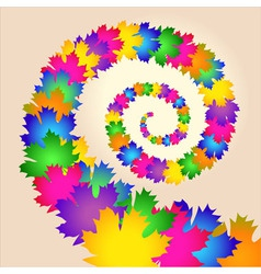 Maple colorful leaves swirl vector image
