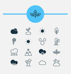 Nature icons set collection of raindrop cactus vector