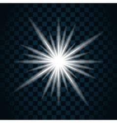 sparkle light star 11 vector image