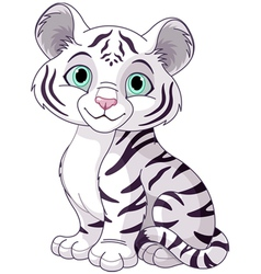 White tiger cub vector image vector image