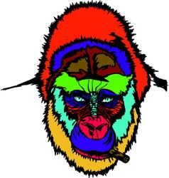 A monkey vector