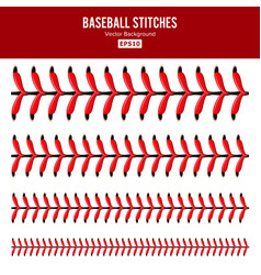Baseball stitches lace from a vector