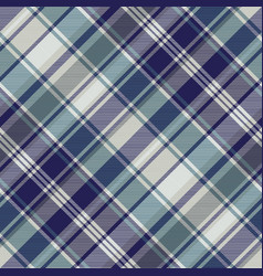 blue striped tartan plaid seamless pattern vector image