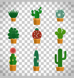 Cactus icons in flat style vector
