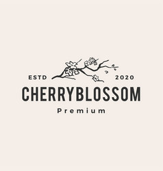 cherry blossom hipster vintage logo icon vector image