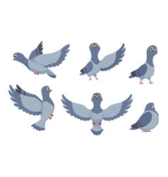 Collection of cartoon pigeons vector