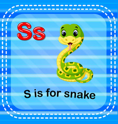 flashcard letter s is for snake vector image