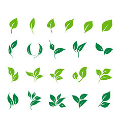 leaves icon set ecology icon set vector image