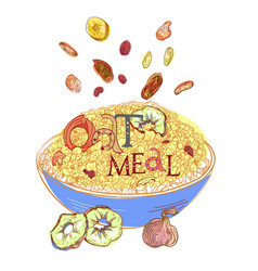 Oatmeal with dehydrated fruits vector