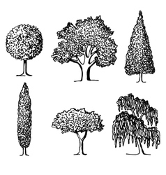 set trees in silhouettes vector image