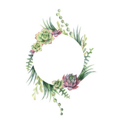 Watercolor frame cacti and succulent vector