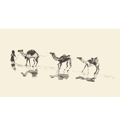 Caravan Camels Desert Sketch vector image vector image