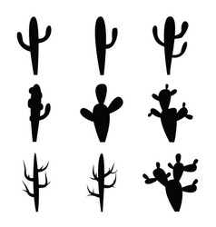 black silhouettes of cactus vector image