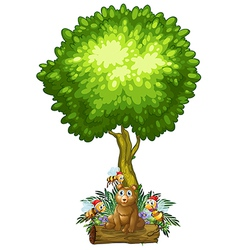 A bear and the three bees under the tree vector image