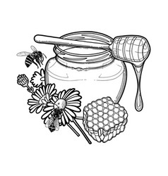 Graphic honey bottle decorated with chamomile vector