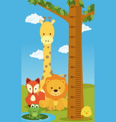 height chart animals vector image