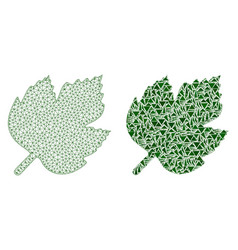 Polygonal wire frame mesh grape leaf and mosaic vector
