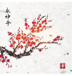 Sakura blossom on handmade rice paper texture with vector