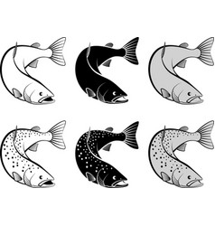 Salmon - monochrome and line art vector