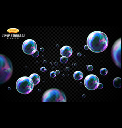 soap bubbles set isolated on black vector image
