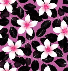 Tropical pink hibiscus flowers with black leaves vector image