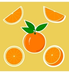 Design Stickers with Juicy Orange vector image vector image