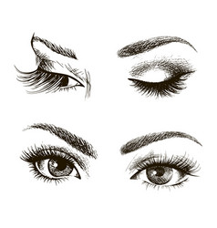female eye set vector image vector image
