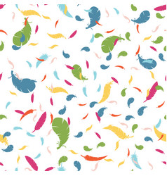 multicolored feathers on a white background vector image vector image