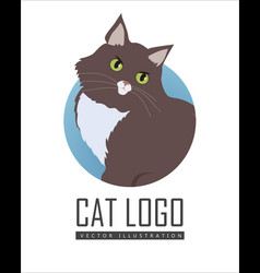 siberian cat flat design vector image
