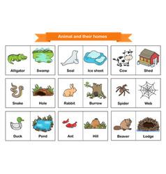 Animal and their homes flash cards printable vector